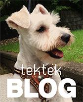 犬の首輪ブログ