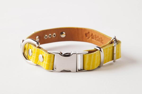 犬 首輪 ka006-002