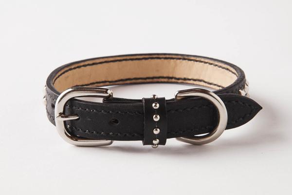 犬 首輪 mb002-002