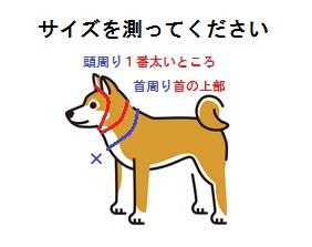 中型犬サイズ